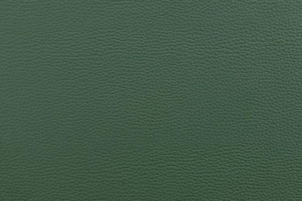 Kunstleder BASIC - leicht strukturierte Oberfläche - dunkelgrün