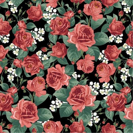 Dekostoff - Canvas - Roses - schwarz