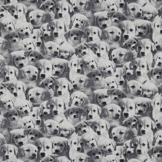 """Canvas """"Sweet Puppies"""" - schwarz/weiss"""